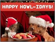 arizona humane society e cards - Humane Society Christmas Cards