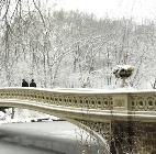 CPC Bow Bridge.142