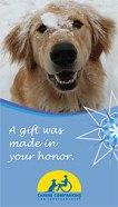 canine-companions-tribute-186