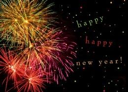 ACS New Year Fireworks.260