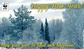 WWF New Year eCard.276