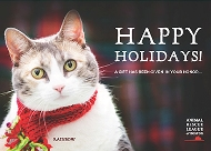 animal-rescue-boston-cat-2016-190